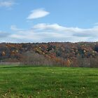 Blue/ Fall/ Green hillside, Ithaca, NY by Christianne White