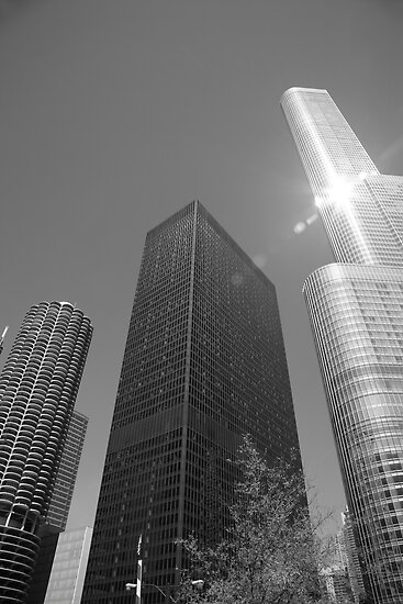 Chicago Skyscrapers by Frank Romeo