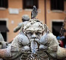 Piazza Navona fountain detail by dgt0011