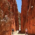 Midday at Stanley Chasm Nothern Territory by burrster