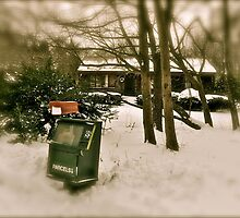The Frozen Mailbox - 2010 by Jack McCabe