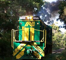 Alco 866 on Burrows Straight by Nathanart