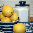 Lemons & Blue and White China by Fizzgig7