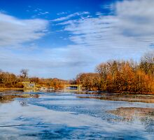 Sharon Woods Lake on a beautiful winter day by Tom Aguero