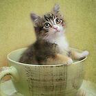 Would you like a spot of tea? by Kimberly Palmer
