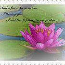 If I Had A Flower..... by wiscbackroadz