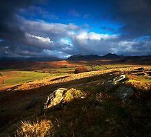 Patchwork Fells by Jeanie