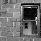 Window to window by Catherine Davis