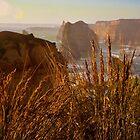 The Twelve Apostles, Shipwreck Coast National Park by John Bullen