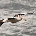 Flying Free by Geoff Beck