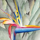 Bird Of Paradise by Ken Powers
