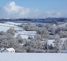 Devon winter snowscape by durzey