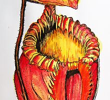 Nepenthes villosa - Tropical Pitcher Plant by Justin Overholt