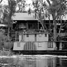 Historic Paddlesteamer at Echuca Wharf by Julie Sleeman