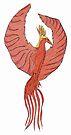 phoenix by dthaase