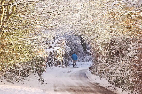 Walking in the Snow (Up To Bittery Cross) by Mike  Waldron