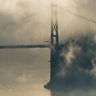 Lions Gate Bridge in Fog by Tracy Riddell