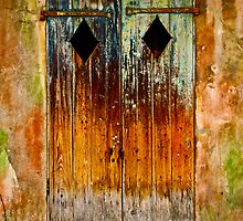 Weathered Door by justkeating