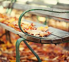 Lovely Autumn by Isabelle Lafrance