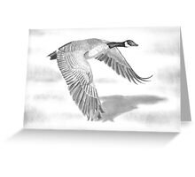 """""""Northern Bound"""" Canadian Goose in flight Greeting Card"""