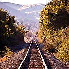 Foot Prints of a Train by Howard Lorenz