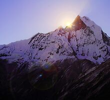 Machhupuchare Sunrise, Nepal. by Andy Newman