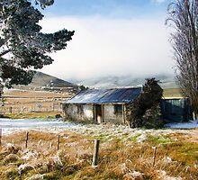 Alexandra, New Zealand..... by Janine  Hewlett