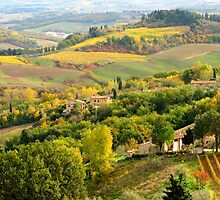 Colors of Fall - Tuscan Hills, Italy by ljroberts