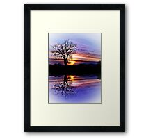 The Tree Of Reflections Framed Print