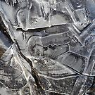 Ice Abstract by Lynda Lehmann