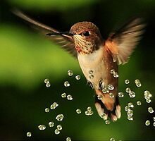 ..TINY BUBBLES.. by RoseMarie747