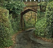 Castle Bridge by Catherine Hamilton-Veal  ©