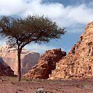 Wadi Rum by yvesrossetti