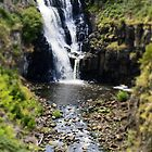lal lal falls by col hellmuth