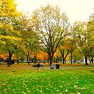 Laidback days of Autumn by MarianBendeth