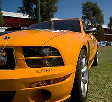 Yellow Mustang by Michael Pickerill