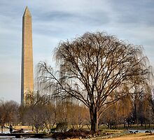 D.C. Vantage Point by LukeEverett