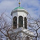 Church Steeple behind the branches by henuly1
