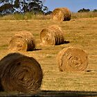 haybales by jainiemac