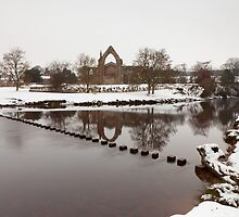 Bolton Abbey. by Nick Atkin