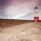 Berwick Lighthouse by Brian Kerr