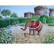 Elephant Prince Photographic Print