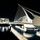 Samuel Beckett Bridge, Dublin, Ireland by thesiracusas