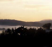foggy sunrise over the Columbia River 3 by Dawna Morton
