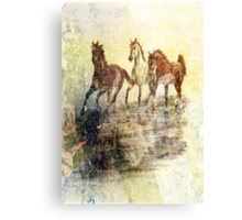 Horses.Vintage Card. Canvas Print