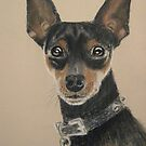 Miniature Pinscher - who&#x27;s a handsome boy, then? by Hilary Robinson