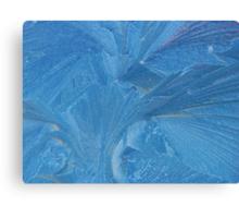 Frost on Windscreen Canvas Print