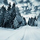 The Spirit Of Winter by Mikko Lagerstedt