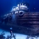 Diver and Wreck, Nassau, Bahamas by Shane Pinder