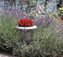 The secret garden by Karen  Rubeiz